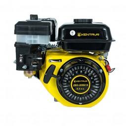 Бензиновий двигун Кентавр ДВЗ-200Б1Х